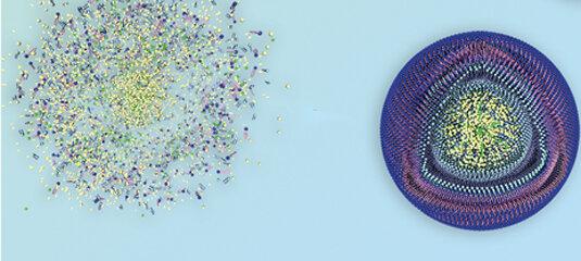درمان سرطان با نانوذرات کلسیم فسفات و سیترات